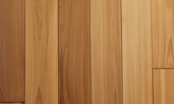Cedar paneling-Contemporary collection