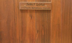 Lyptus tongue and groove paneling-Classic collection